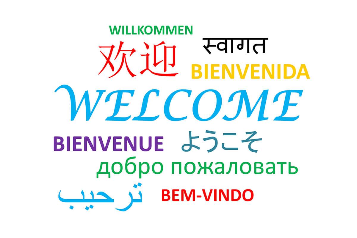Dịch tiếng Anh sang tiếng Việt và ngược lại - 2000 từ